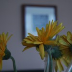 Flowers on our dining table